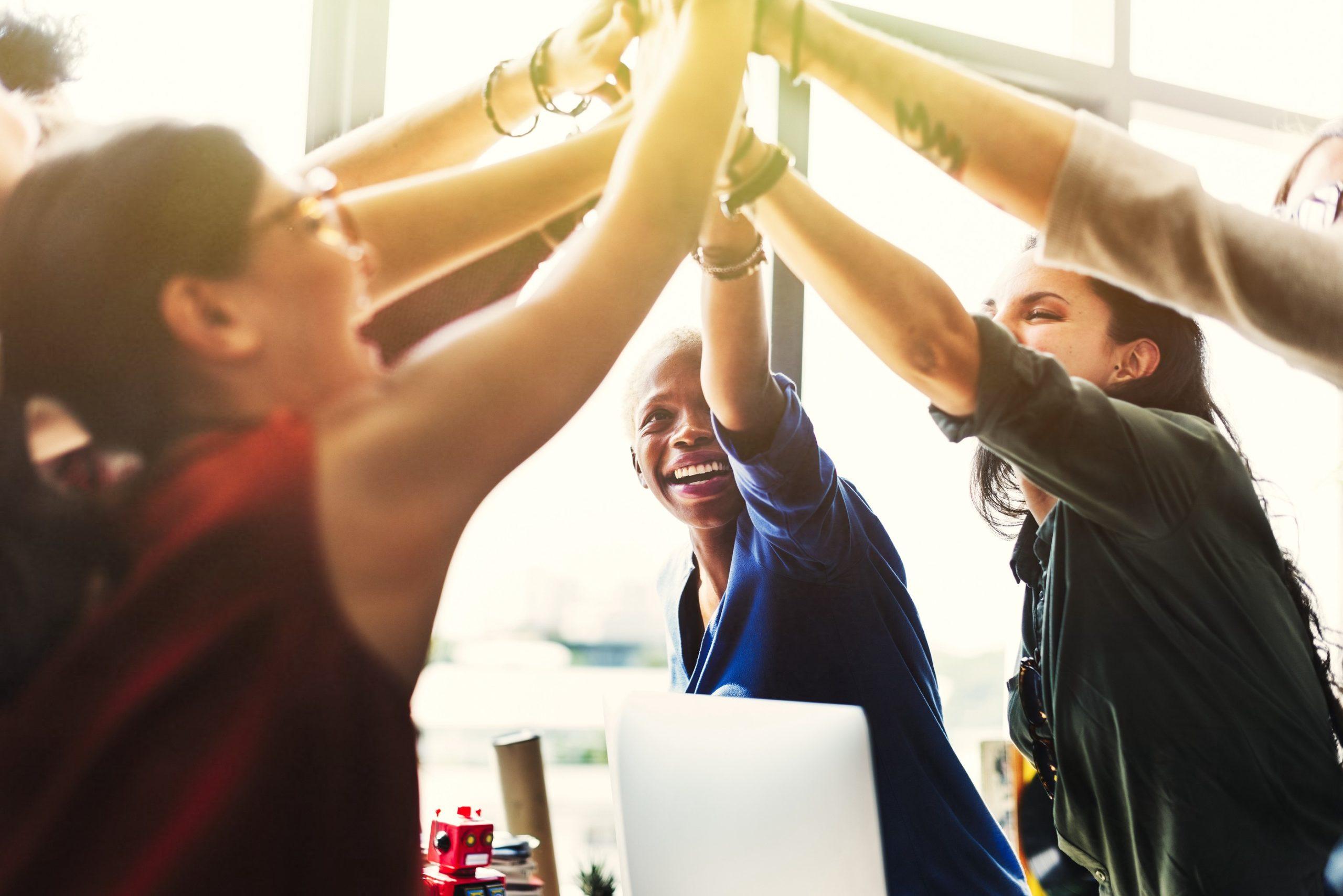 Motivasyon, takım yönetiminde önemli bir faktördür.