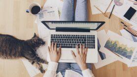 Evden Çalışma - Şirketler, evden çalışmanın liderlik ekipleri ve çalışanları üzerinde yarattığı bedeli fark etmeye başlıyor.