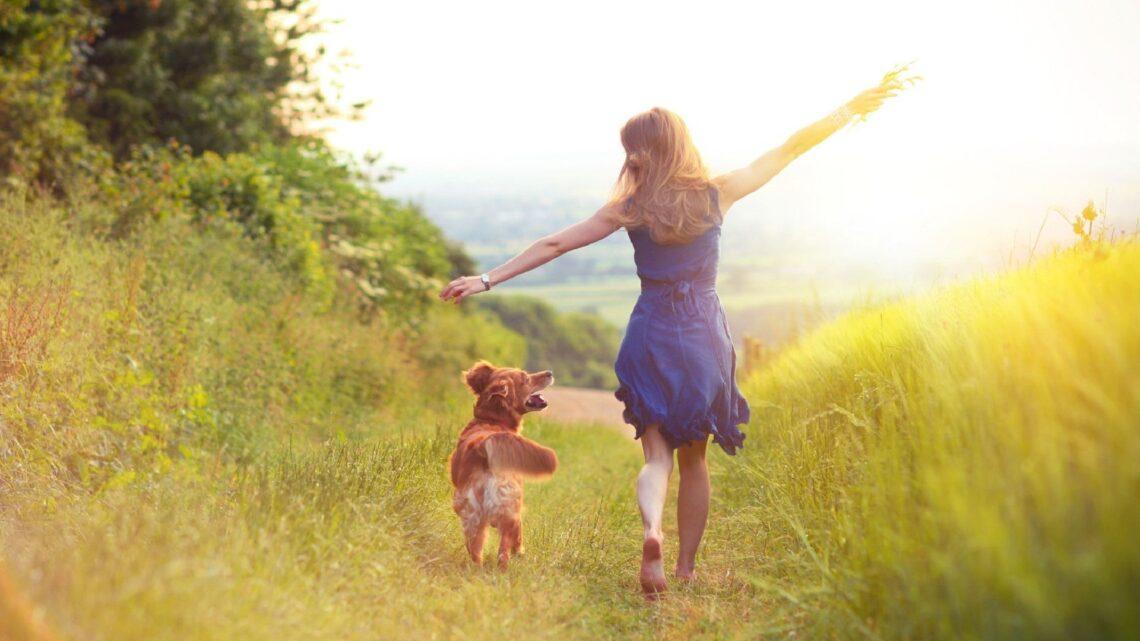 Mutluluğa Ulaşmak Üzerine 7 Kolay İpucu