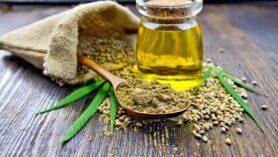 Kenevir tohumu faydaları listemizde sağlığa olan faydaları verilecektir;