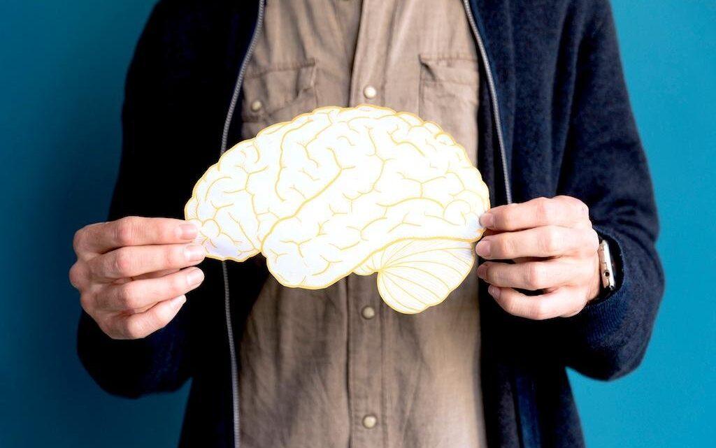 Hafıza Nasıl Geliştirilir? - Hafızanızı etkin şekilde kullanmak için, başarılı insanların yaptıkları bazı teknikleri de bilmeniz gerekir.