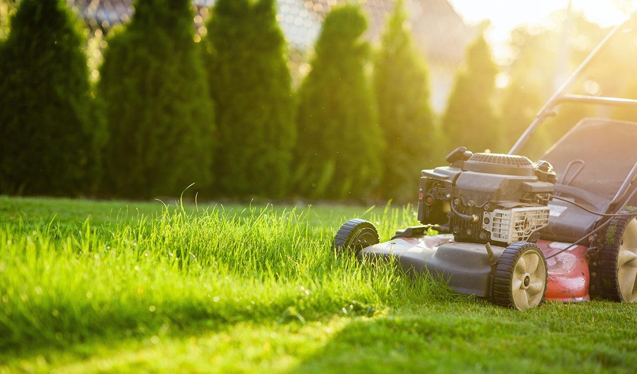 Güneşte olmayı seviyorsanız, ilkbahardan sonbahara kadar öğütme, biçme ve tırmıklama hizmetleri sunan bir çim bakımı işi başlatabilirsiniz.