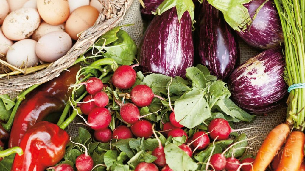 Organik gıdalar daha çok vitamin - mineral ve antioksidan içeriyor. Daha fazla antioksidan kapasiteye sahip besinler, çağımızın hastalığı kansere karşı muhteşem bir kalkan oluşturuyor.