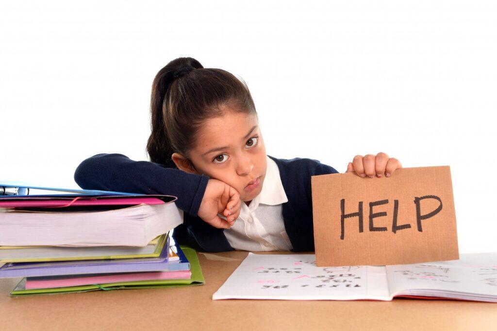 Çocuğunuzun ne üzerinde ve ne zaman çalışması gerektiğini bilmesi için bu programı el altında bulundurun.